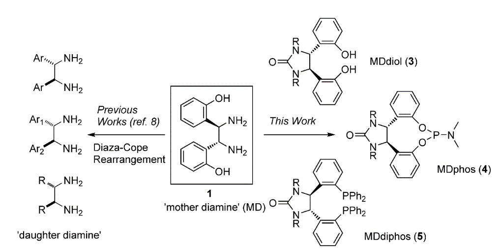 """Mother"" diamine converted to ""daughter"" diamines and chiral ligands."